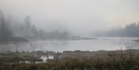 11-04-15 foggy pond at sunrise