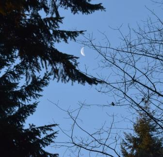 2-2-16 AM moon
