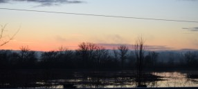 2-2-16 Farksolia sunrise