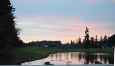 2-3-16 sunrise pond
