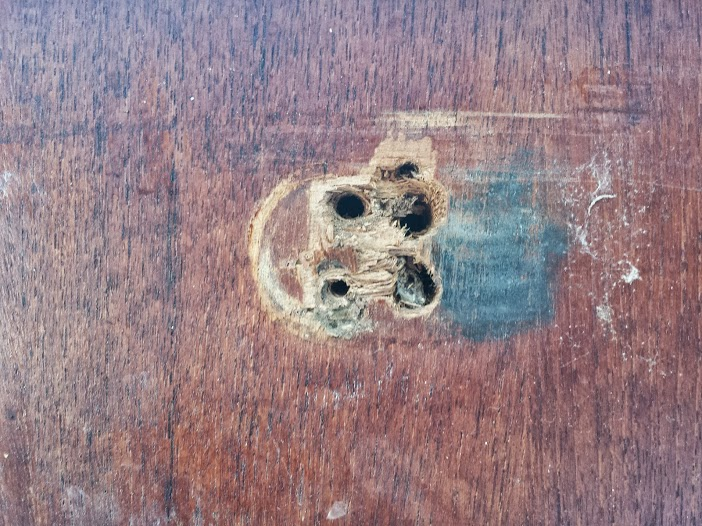 Damaged screw holes in cabinet where companionway step attaches