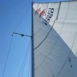 Catalina 25 Sailing