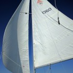 Catalina 25 wing-on-wing sailing
