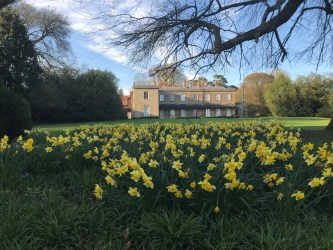 Fillongley Hall - Exclusive Midlands Wedding Venue - Photo of rear elevation in spring with daffodils