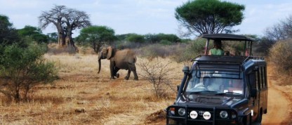 scenery-safaris-in-uganda-1-700x300