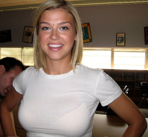 Adrianna Palicki, See Thru Top and Bra