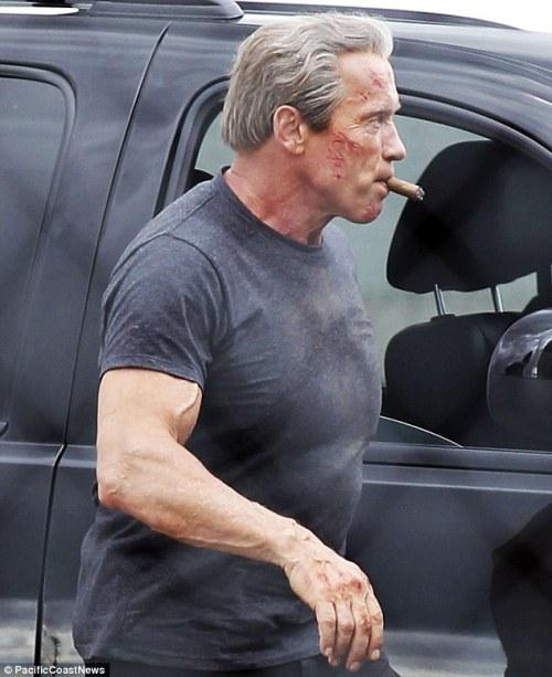 Arnold Schwarzenegger Terminator Genesis