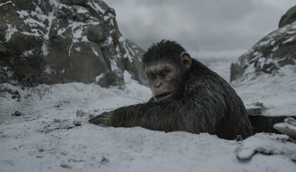 Andy Serkis War For The Planet of the Apes 02