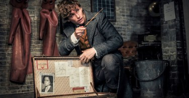 Eddie Redmayne Fantastic Beasts: The Crimes of Grindelwald