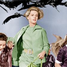 Ptaki (1963)