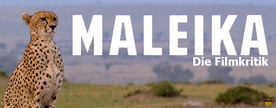 Maleika - Review   Filmkritik über Doku mit Gepardin