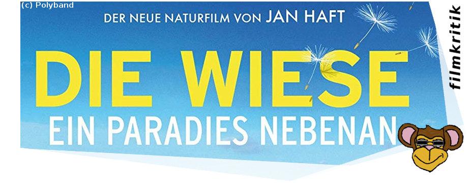 Die Wiese ein Paradies nebenan - Filmkritik | Naturfilm von Jan Haft