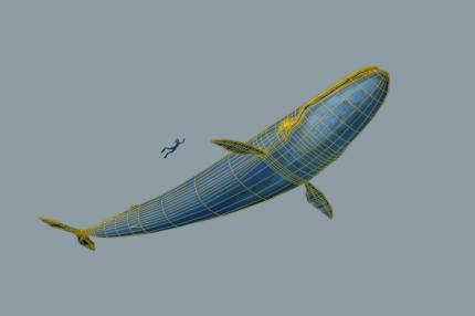 filmakes-arash-daemi-3d-modeling-007-blue-whale-wireframe