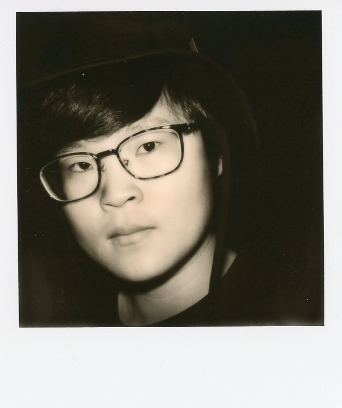 Impossible Project SX 70 Polaroid