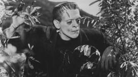 Frankenstein 8