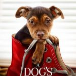 A Dog's Way Home (2019) film online subtitrat in romana HD