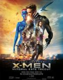 X-Men: Days of Future Past (2014) online subtitrat in romana HD