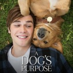 A Dog's Purpose (2017) online subtitrat in romana HD
