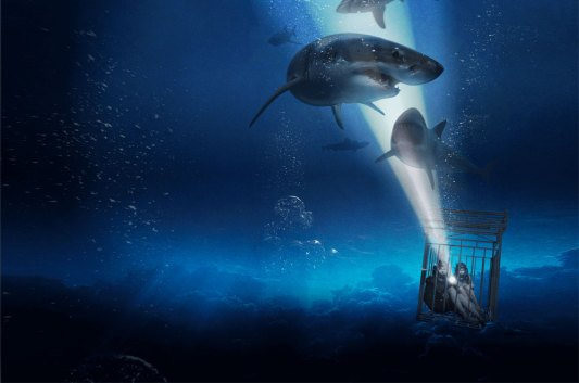 Image result for 47 METERS DOWN 2019