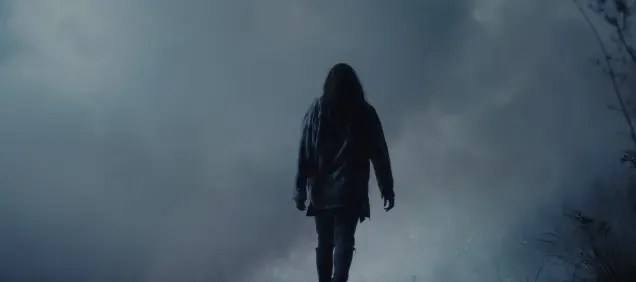 The silhouette of a women walking away into a thick wall of fog.