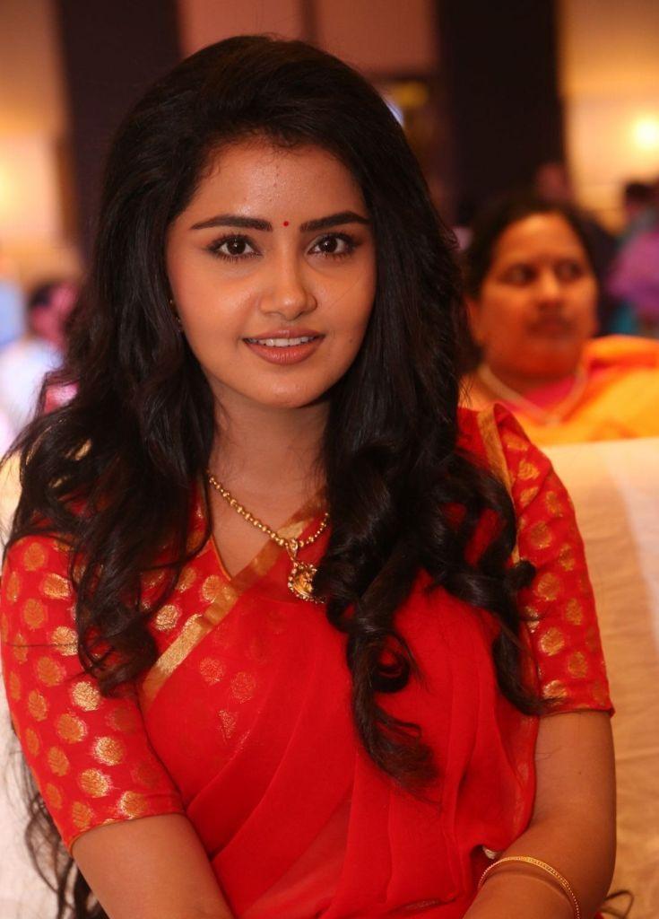 54+ Gorgeous Photos of Anupama Parameswaran 134