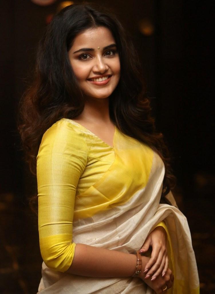 54+ Gorgeous Photos of Anupama Parameswaran 135