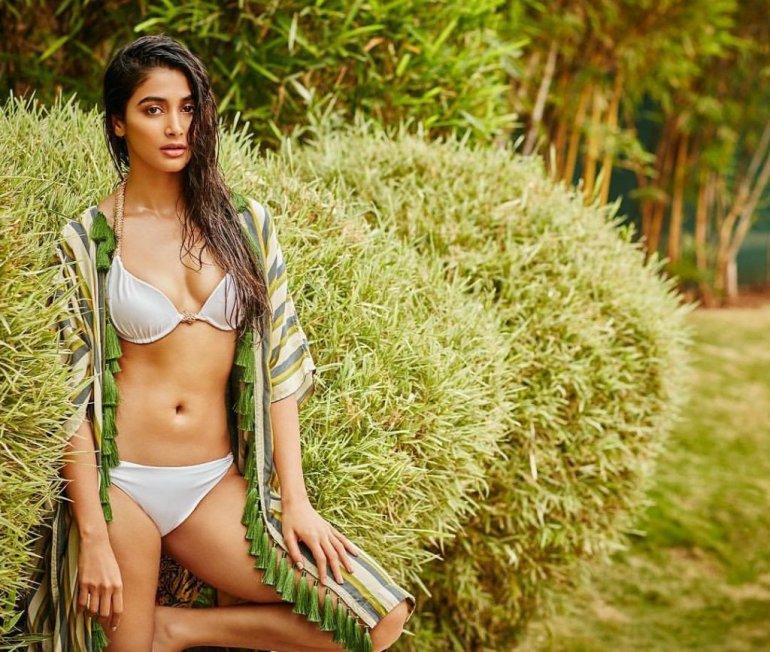 129+ Gorgeous Photos of Pooja Hegde 142