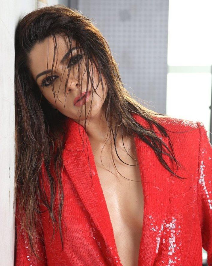 32+ Gorgeous Photos of Sakshi Choudhary 6