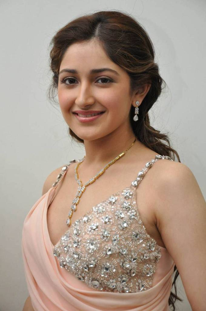 72+ Charming Photos of Sayesha Saigal 142