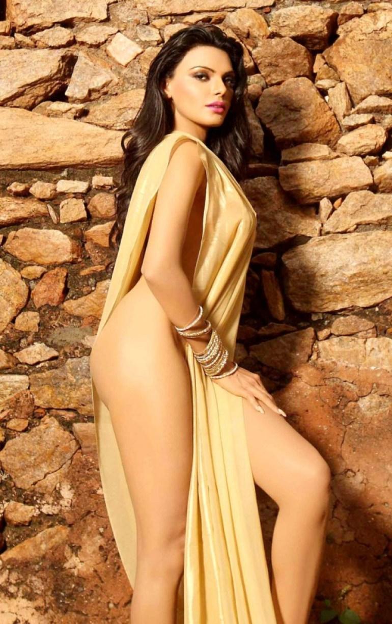 49+ Glamorous Photos of Sherlyn Chopra 16