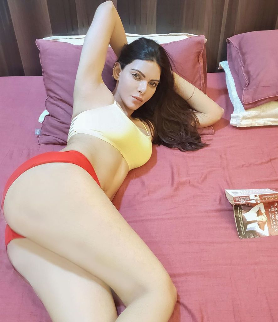 49+ Glamorous Photos of Sherlyn Chopra 35