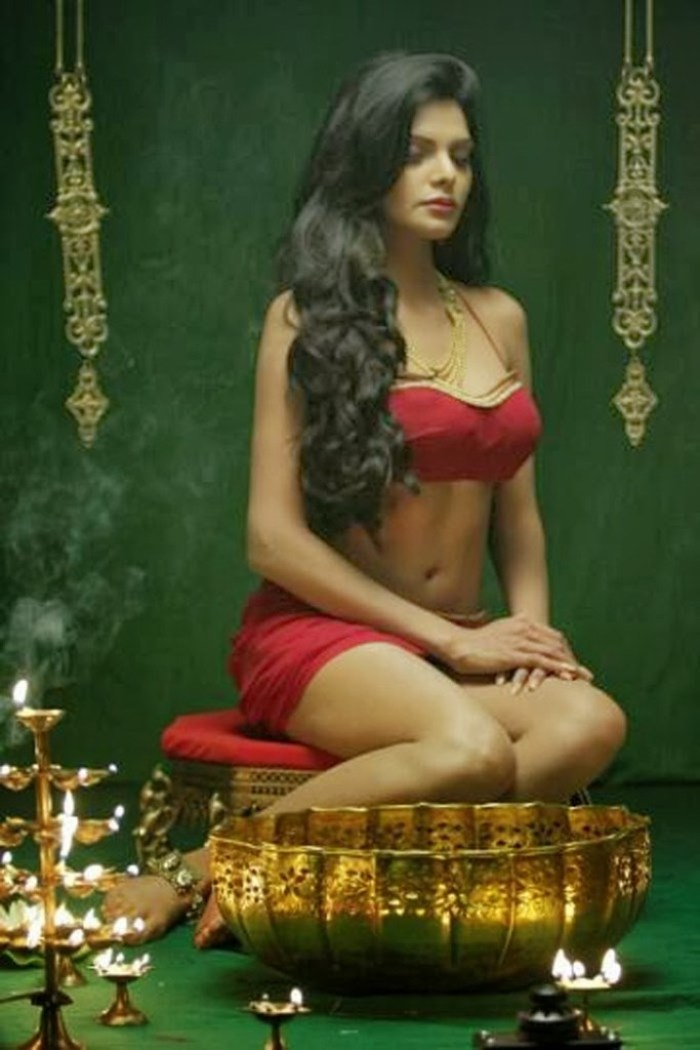 49+ Glamorous Photos of Sherlyn Chopra 41