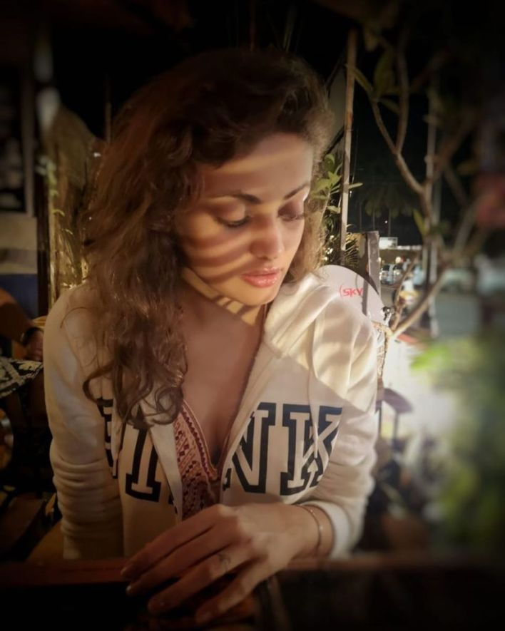 43+ Gorgeous Photos of Sneha Ullal 22