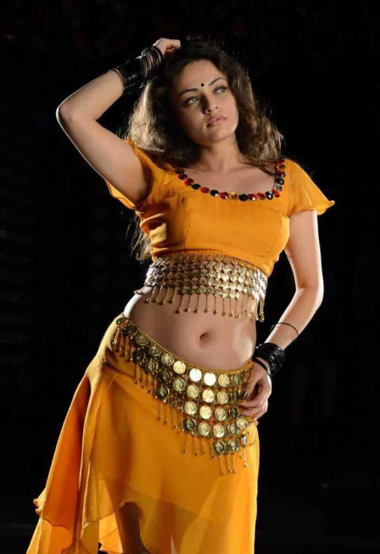 43+ Gorgeous Photos of Sneha Ullal 25