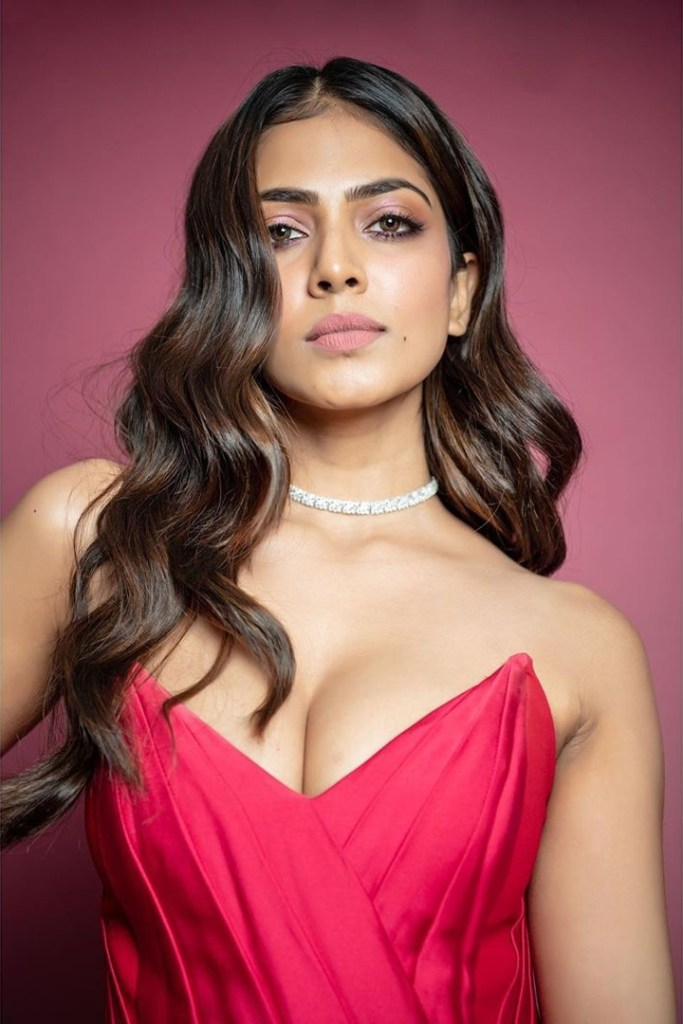117+ Stunning Photos of Malavika Mohanan 120