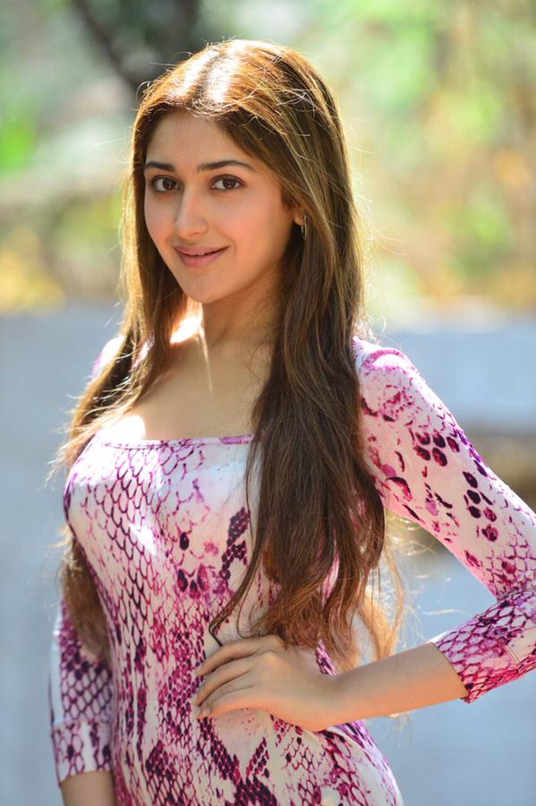 72+ Charming Photos of Sayesha Saigal 146