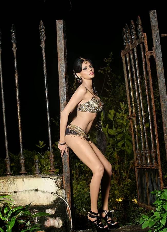 49+ Glamorous Photos of Sherlyn Chopra 43