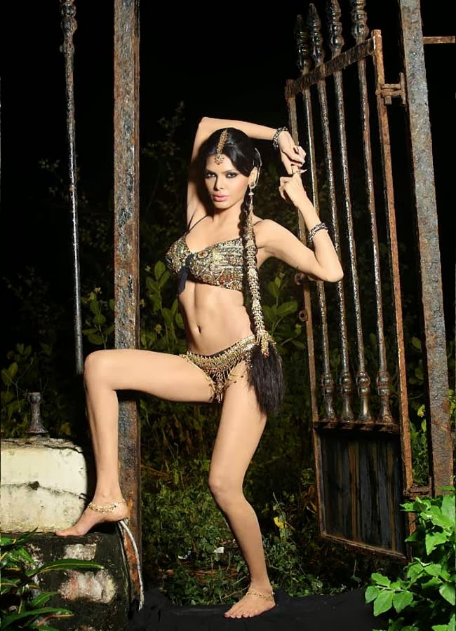 49+ Glamorous Photos of Sherlyn Chopra 44