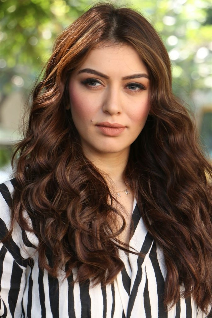 Check out these 33+ photos of Hansika Motwani 88