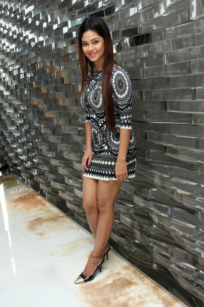 33+ Pretty Photos of Meera Chopra 113