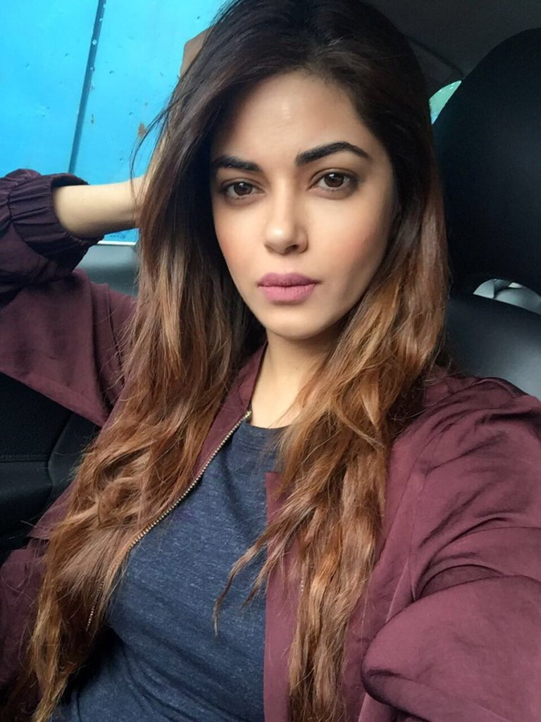 33+ Pretty Photos of Meera Chopra 89