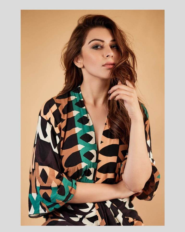 Check out these 33+ photos of Hansika Motwani 119
