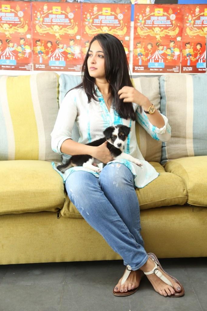 126+ Stunning HD Photos of Anushka Shetty 16
