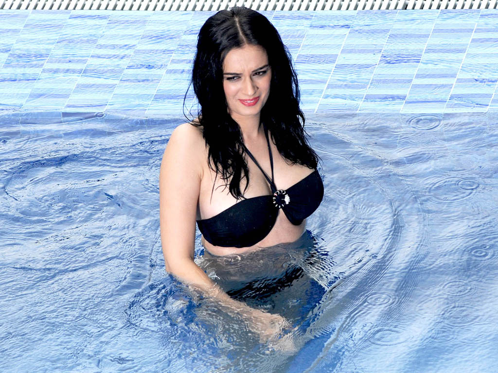 39+ Charming Photos of Evelyn Sharma 33