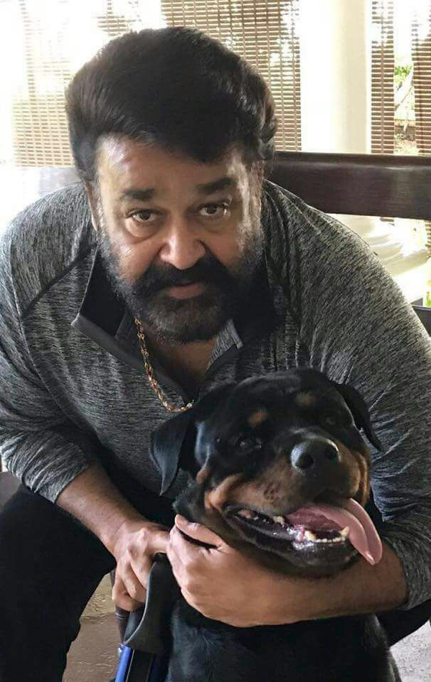 Mohanlal Wiki, Age, Family, Movies, HD Photos, Biography, and More 9