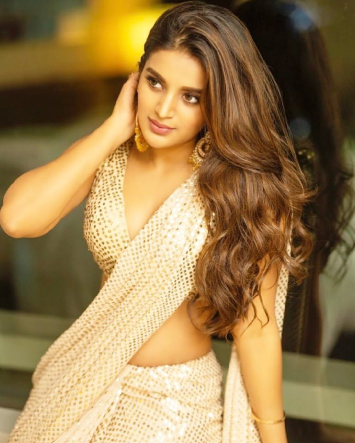 Nidhhi Agerwal Wiki, Age, Biography, Movies, and Beautiful Photos 9
