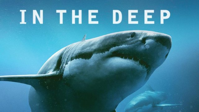 in-the-deep