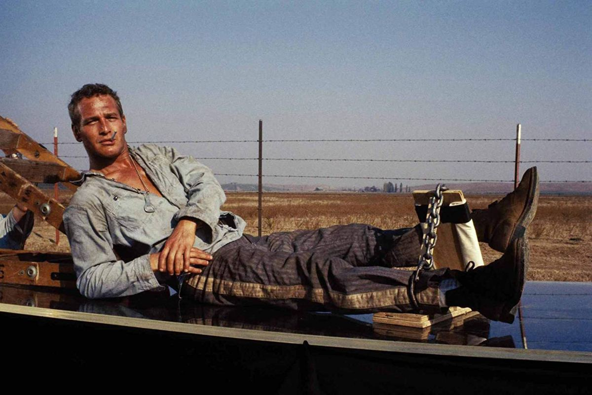 Rewind: 1967 in Film - Cool Hand Luke