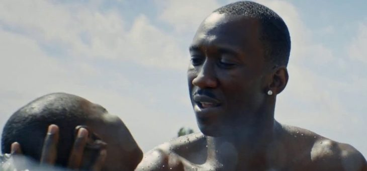 'Moonlight' and a Preview of the 54th New York Film Festival