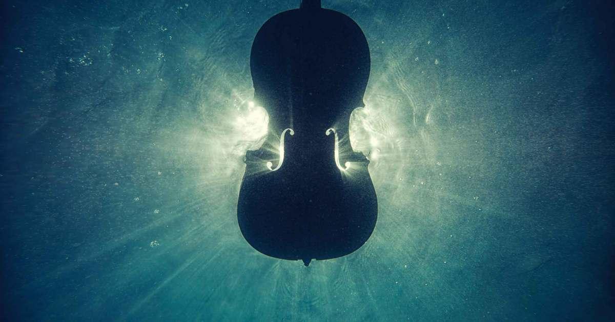 violin textures